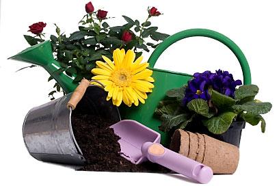 gardening-equipment3