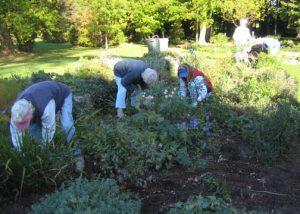 KGC House Fall Garden Clean Up